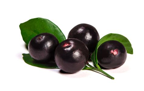 acai berries study cancer cells picture 10