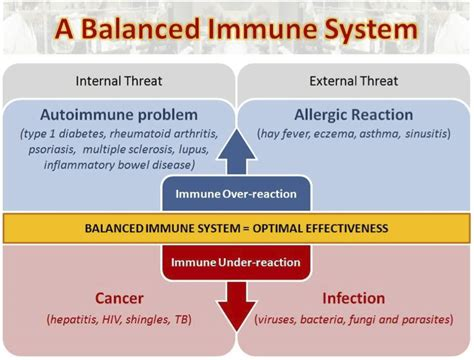 cfs is a th1 immune disease bacterial in origin picture 2
