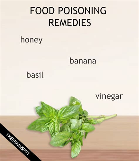 herbs that kill ecoli picture 2