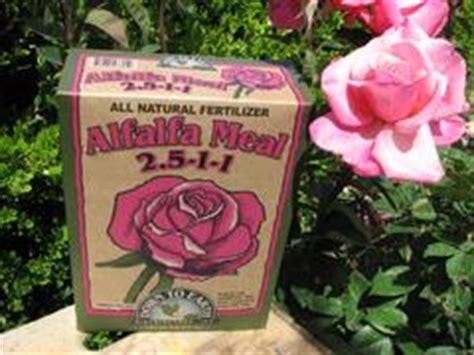alfalfa fertilizer picture 3