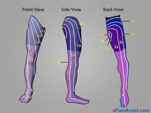 does tricor cause muscle pain in legs picture 13