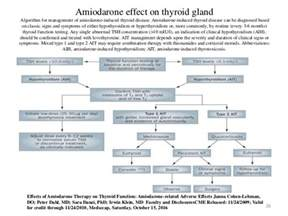 rifampin-induced hypothyroidism without underlying thyroid disease. picture 5
