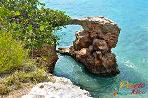puerto rico natural supplement picture 1