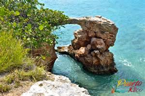 herbal medinine in puerto rico picture 5