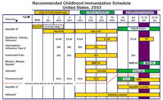 county board of health immunizations department picture 6