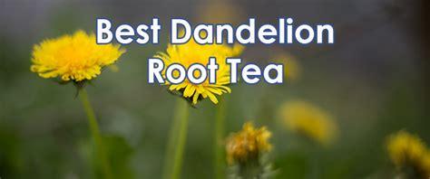 dandelion root testosterone picture 18