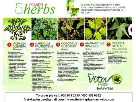 vita plus for hepab cure picture 2