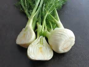 fennel picture 7