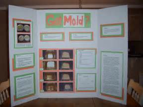 science fair projects yeast picture 13
