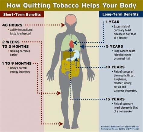 changes when you quit smoking picture 14