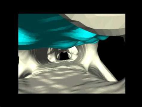 dura pain tablet picture 9
