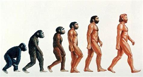 perfect origins diet picture 5