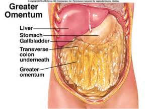 Whats in your colon picture 7