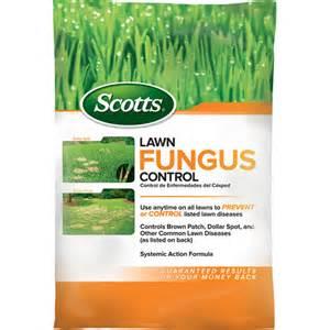 lawn fungus control picture 2