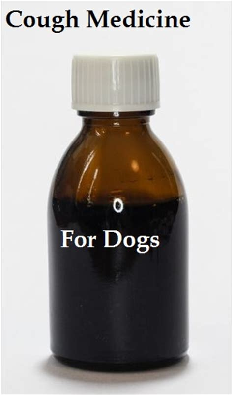 cough suppressors for dogs picture 11