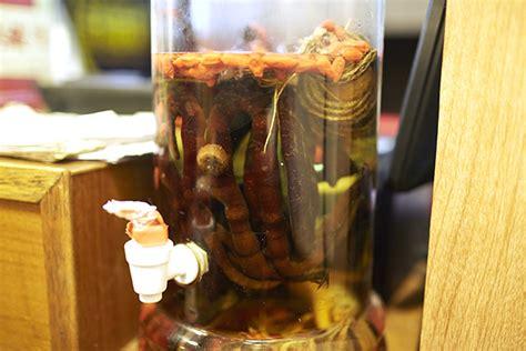 deer penis rice wine picture 6