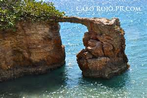 herbal medinine in puerto rico picture 13