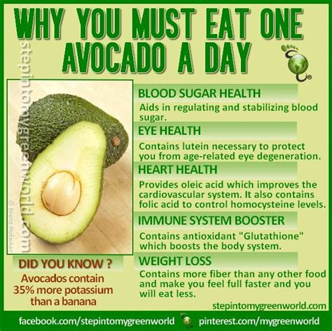 avocados and diet picture 1