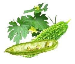 natural remedy gamot sa almoranas picture 7