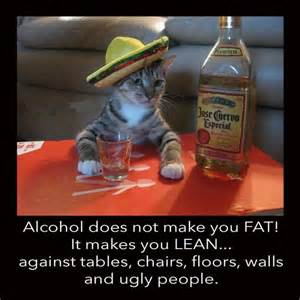 will whiskey make you fat picture 10