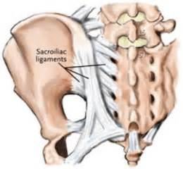 inflammation and sacral joint picture 15