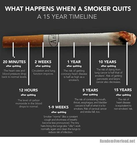 quit smoking chart picture 9