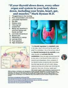 thyroid about thyroid info picture 2