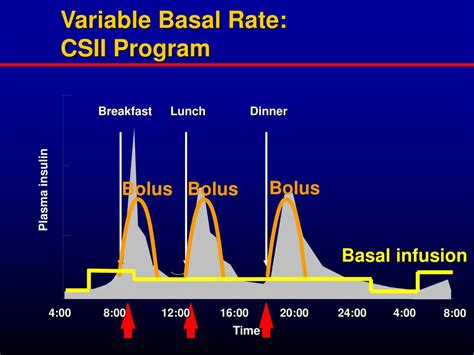 basal rate in diabetics picture 3
