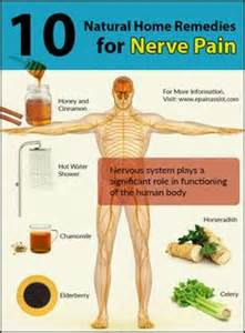 herbs for hives and nerve pa8in picture 2