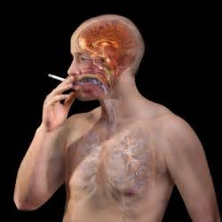 can you be allergic to tobacco smoke picture 19