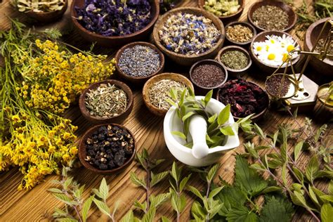 mexican herbal pharmacies picture 5