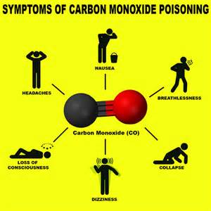 results of burning carbon monoxide picture 21