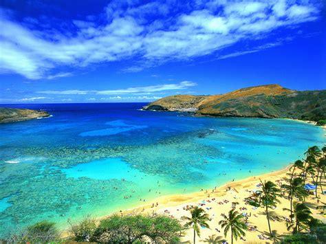 ultra green costa rica picture 1