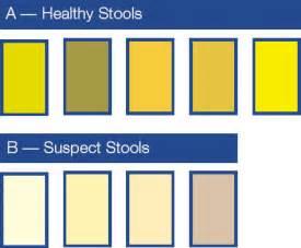 what does light color bowel movements mean picture 6