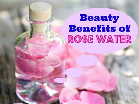 benefits of rose water for skin picture 5