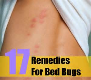 free herbal remedies for bugs picture 3