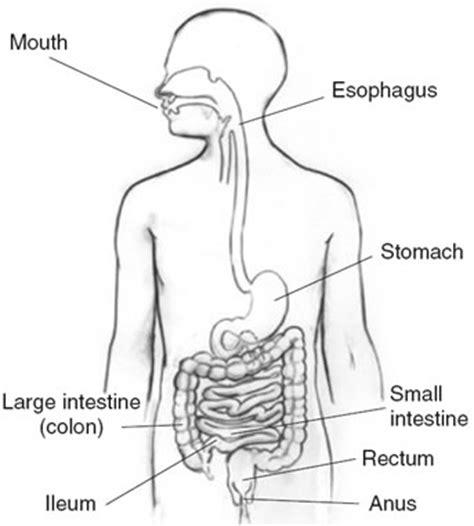 small el disease picture 6