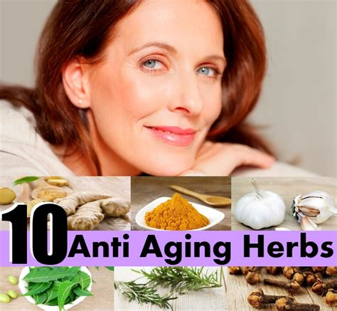 ageing herbs picture 10