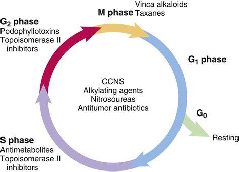 cdc.gov colon cancer picture 15