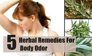 herbal remedies for body odor picture 1