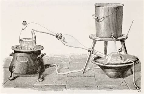 herbal oil extractor picture 5