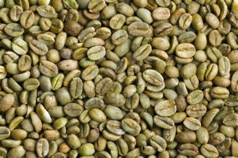 fda and green coffee beans picture 6