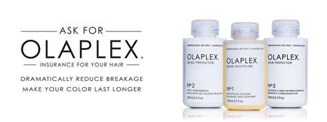 olaplex ingredients list picture 7