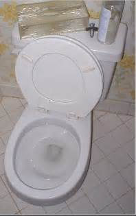 find never scrub toilet bowel cleaner picture 2