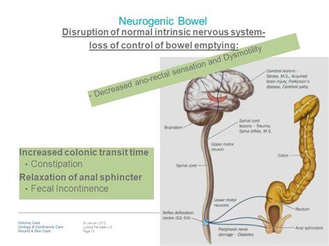 diarreah and no bowel control picture 11