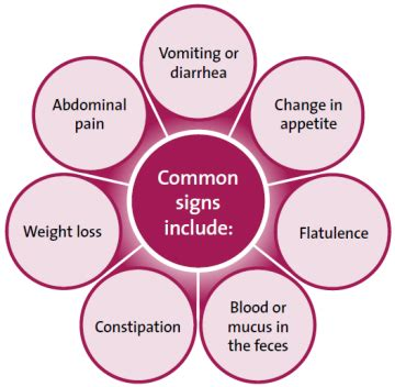 intestinal problems and symptoms picture 1