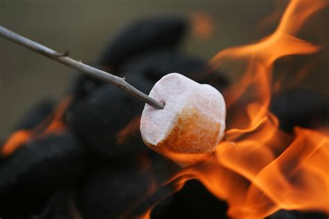 can you roast marshmellows on gel fire pit? picture 6