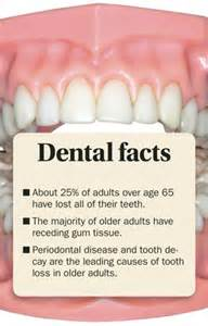 facts about teeth picture 10