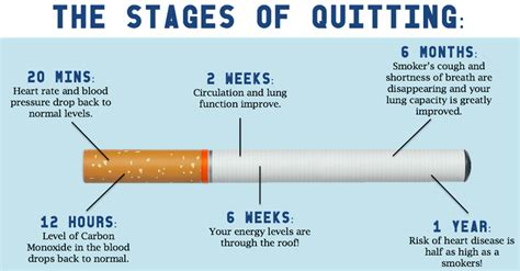 tuberculosis and not quit smoking picture 5