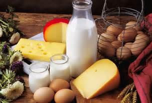 dairy diet picture 14
